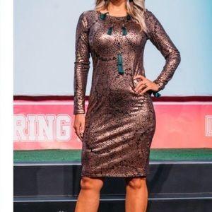LuLaRoe Debbie Dress